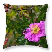 Wild Rose 3 Throw Pillow