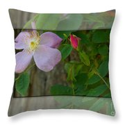 Wild Rose Out Of Bounds 1 Throw Pillow