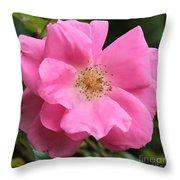 Wild Rose Square Throw Pillow