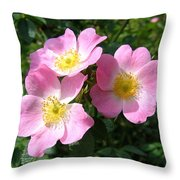 Wild Roses 1 Throw Pillow