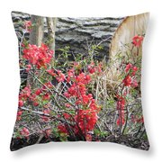 Wild Roses In Wood Throw Pillow
