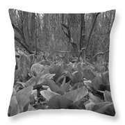 Wild Skunk Cabbage Bw Throw Pillow