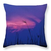 Wild Sky And Grasses Throw Pillow