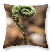 Wild Spring Fern Throw Pillow