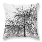 Wild Springtime Winter Tree Black And White Throw Pillow by James BO  Insogna