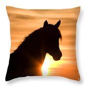 Wild Stallion At Sunrise Throw Pillow
