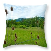 Wild Teasel In Nez Perce National Historical Park-id- Throw Pillow