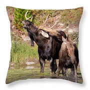 Wild Thing I Think I Love You Throw Pillow
