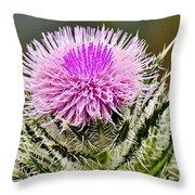 Wild Thistle  Throw Pillow
