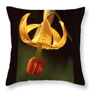 Wild Tiger Lily Throw Pillow