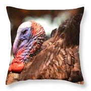 Wild Turkey 2013 Throw Pillow