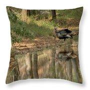 Wild Turkey Crossing Throw Pillow