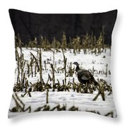 Wild Turkey In The Corn Throw Pillow by Thomas Young