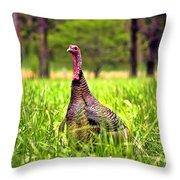 Wild Turkey Throw Pillow