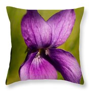 Wild Violet Throw Pillow