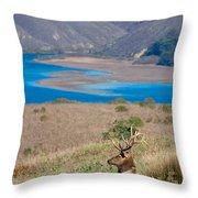 Wild Wapiti Surveying His Kingdom Throw Pillow