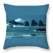 Wild Waters 2 Throw Pillow
