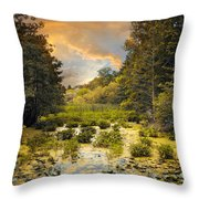 Wild Wetlands Throw Pillow