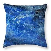 Wild Wild Sea Throw Pillow