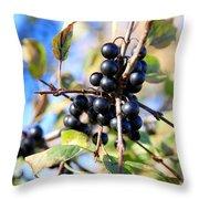 Wildberry Plant Throw Pillow