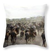 Wildebeest Migration  Throw Pillow