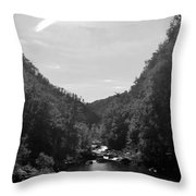 Wilderness At Noon Throw Pillow