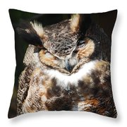 Wilderness Owl Throw Pillow