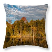 Wilderness Pond 2 Throw Pillow