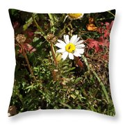 Wildflower @ Kit Carson Throw Pillow