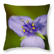 Wildflower 1 - Botanical Photography By Sharon Cummings Throw Pillow