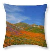 Wildflower Extravaganza  Throw Pillow
