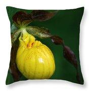 Wildflower Lady Slipper Throw Pillow