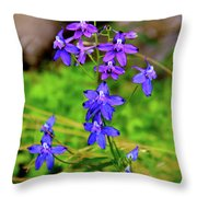 Wildflower Larkspur Throw Pillow
