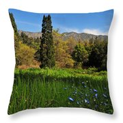 Wildflower Meadow At Descanso Gardens Throw Pillow by Lynn Bauer