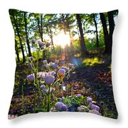 Wildflower Sunset Throw Pillow