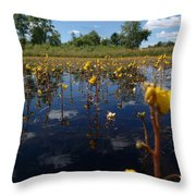 Wildflower Waterscape Throw Pillow