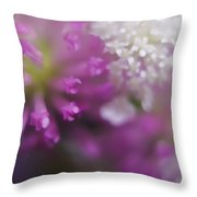 Wildflower Way Iv Throw Pillow