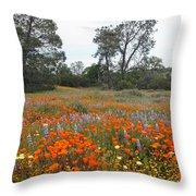 Wildflower Wonderland 2 Throw Pillow