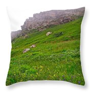 Wildflowers And Mountainous Bluffs At Point Amour In Labrador Throw Pillow