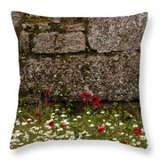 Wildflowers And Olympia Ruins   #9508 Throw Pillow