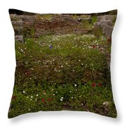 Wildflowers And Olympia Ruins   #9594 Throw Pillow