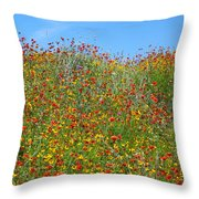 Wildflowers And Sky 2am-110541 Throw Pillow