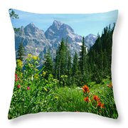 1m9372-v-wildflowers In Cascade Canyon, Tetons Throw Pillow
