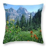 1m9371-h-wildflowers In Cascade Canyon, Tetons Throw Pillow