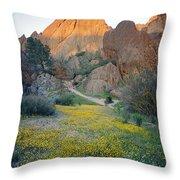1b6430 Wildflowers In Pinnacles National Park Throw Pillow