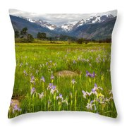 Wildflowers In Rocky Mountain National Park Throw Pillow