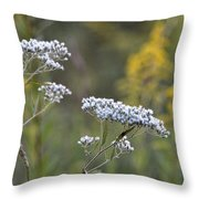 Wildflowers In September 2012 Throw Pillow