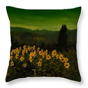 Wildflowers In The Beartooth Mountains Throw Pillow