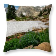 Wildflowers In The Indian Peaks Wilderness Throw Pillow