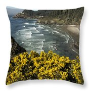 Wildflowers On An Atypical Winter's Day On The Oregon Coast Throw Pillow